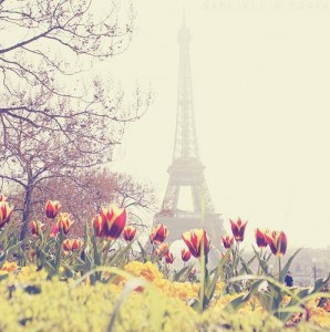 331052-i-love-travel-beautiful-paris